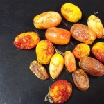 Peste negra del tomate