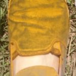 02 Zapato de monitoreador completamente cubierto por uredinosporas de Pst. Autor: Ing. Agr. Heber Adami (Carlos Casares).
